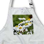 click on Pretty Daisies - Spring Flowers Floral Print to enlarge!