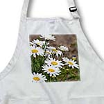 click on Sunny Day Daisies - Spring Flowers - Floral Print to enlarge!