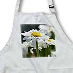 click on White Daisy - Spring Gardens - Flowers - Floral Print to enlarge!