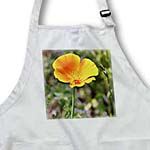 click on Happy Orange Poppy Flower - Spring Flowers - Floral Print to enlarge!