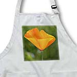 click on Spring Poppy - California Orange Poppy Flower - Floral Print to enlarge!