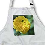 click on Sunny Yellow Flower - Gardens - Floral Print to enlarge!