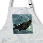 click on An otter swimming that shows air pockets to enlarge!