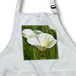 click on Spring White Poppy Flower - Floral Print to enlarge!