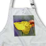 click on Yellow Iceland Poppy Inspired Flower - Floral Print to enlarge!