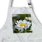 click on One Little Daisy - White Flowers - Spring Inspirations to enlarge!