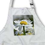 click on Pretty Daisy - Spring Floral Print - Flowers to enlarge!