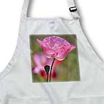 click on Beautiful Pink Poppy Flower - Inspired Floral to enlarge!