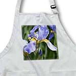 click on Inspired Iris Flower - Pretty Garden Floral to enlarge!