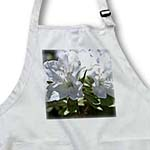 click on White Azalea Floral Print - Spring Garden to enlarge!