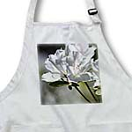 click on Beautiful White Azalea Flowers - Floral Print to enlarge!