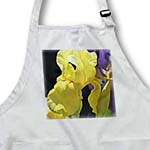 click on Beautiful Yellow Iris - Spring Garden Flowers - Floral Print to enlarge!