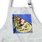 click on Beautiful Moth to enlarge!