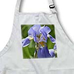 click on Spring Iris Flower - Floral Print - Garden to enlarge!