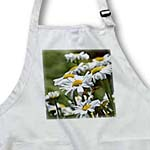 click on Spring Daisies - White Flowers - Floral Print to enlarge!