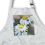click on Pretty Daisies in the Sun - White Flowers - Floral Print to enlarge!
