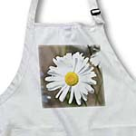 click on Beautiful White Daisy Flower - Spring Garden - Floral Print to enlarge!