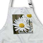 click on Beautiful White Daisies - Spring Garden - Flowers to enlarge!