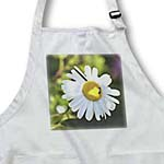 click on Spring Daisy - Flower Garden - Floral Print to enlarge!