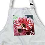 click on Pink Gerbera Flowers - Floral Print - Spring Photography to enlarge!