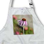 click on One Flower Pretty Pink Echinacea - Summer Floral Print to enlarge!