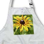 click on Yellow Black Eyed Susan - Beautiful Flowers - Floral Print to enlarge!
