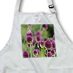 click on Beautiful Garden Flowers - Pink Flowers - Floral Print to enlarge!