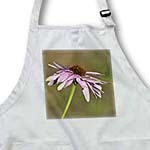 click on Pretty Flowers Pink Echinacea Summer Floral  to enlarge!