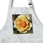 click on Pretty Peach Rose - Romantic Flowers - Floral Print to enlarge!