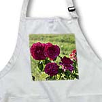 click on Beautiful Red Roses in the Garden - Flowers - Floral Print to enlarge!