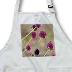 click on Bee on Beautiful Pink Clover Type Flowers - Floral Print to enlarge!