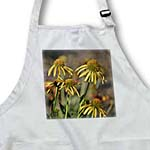 click on Inspired Garden of Yellow Summer Echinacea Flowers to enlarge!