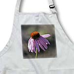 click on Beautiful Pink Echinacea Flower - Floral Print - Garden to enlarge!