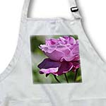 click on Garden Rose - Romantic Pink Flowers - Floral Print to enlarge!