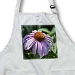 click on Early Summer Pink Echinacea Flower with Bee - Floral Print to enlarge!