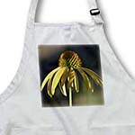 click on Summer Garden Yellow Echinacea Flower - Floral Photography to enlarge!