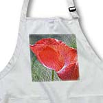 click on Red Poppy Flower - Whimsical Spring Floral to enlarge!