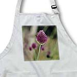 click on Inspired Bee on a Pink Clover Type Flower - Floral Print to enlarge!