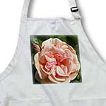 click on Romantic Garden Peach Rose - Flowers - Floral Print to enlarge!