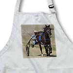 click on Harness Racing to enlarge!