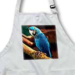 click on Hyacinth Macaw to enlarge!