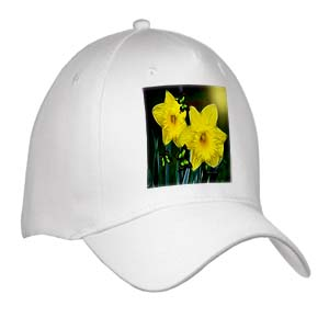 click on Easter Daffodils to enlarge!