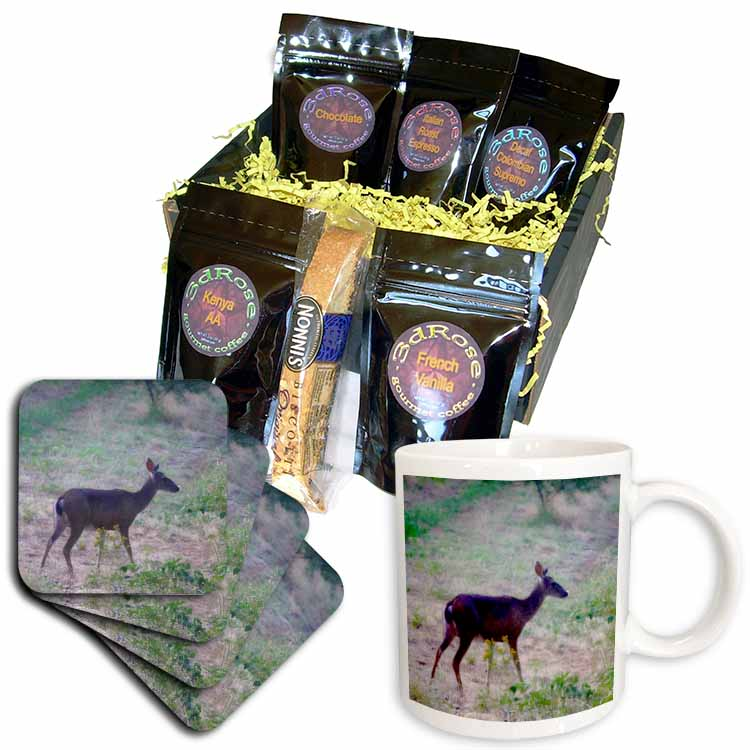 3dRose - Patricia Sanders Photography - Deer in a Meadow- Nature- Animals- Photography - Coffee Gift Baskets at Sears.com