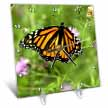 click on Butterfly Monarch Flowers Orange Purple Green to enlarge!