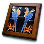 click on BLUE GOLD MACAWS to enlarge!
