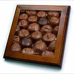click on Chocolate Diet Truffles to enlarge!