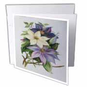 Lilac Clematis - vine, climbing vine, flowers, lilac flowers, purple flowers, cream flowers, Greeting Card