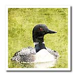 click on Loon With Textures to enlarge!
