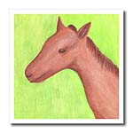 click on Colt Horse Watercolor to enlarge!