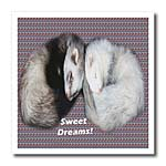 click on Sleeping Ferrets to enlarge!